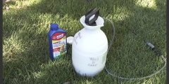 How to apply lawn weed killer